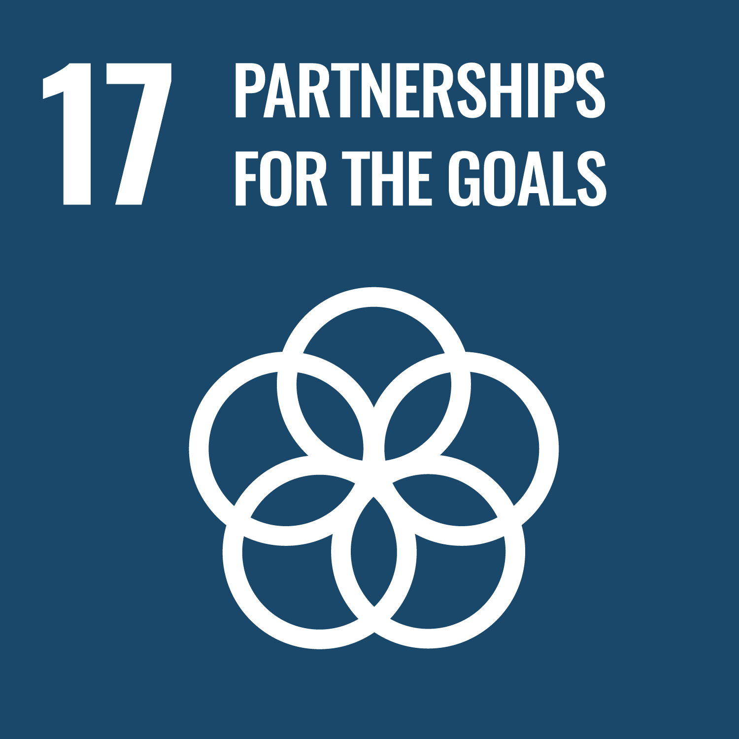 UN Sustainable Development Goal 17: Partnerships for the Goals